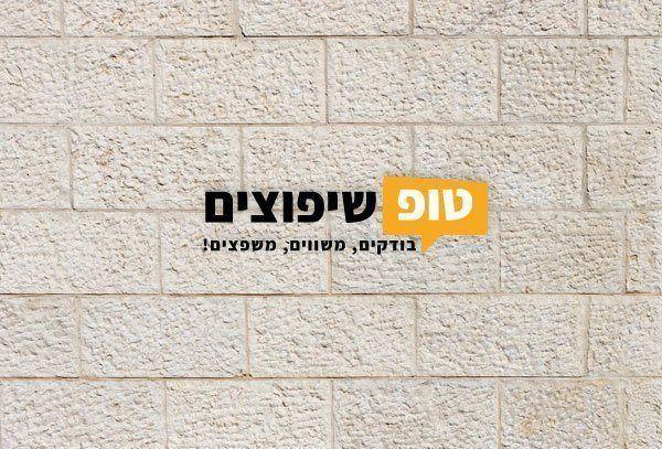מרענן חיפוי אבן ירושלמית מחיר זול במיוחד לפי מטר | טופ שיפוצים BI-62